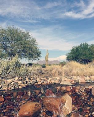 Scottsdale, Arizona. ©loveleemonicaa